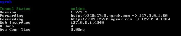Datos devueltos por ngrok en la terminal de comandos